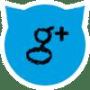 Suivez l'actualité des petits chats sur Google+