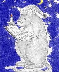 Librairie «Le rat conte tard» à Saint-Genix-sur-Guiers