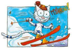 Le chat Seneige sur ses skis